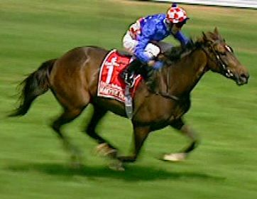 Makybe Diva wins the 2005 Melbourne Cup