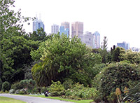 Melbourne from the Royal Botanic Gardens